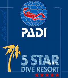 padi five star resort malapascua