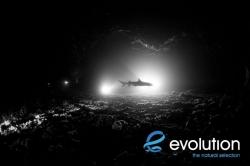Evolution_Malapascua_GatoSharkTunnel_3