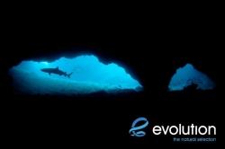 Evolution_Malapascua_GatoSharkTunnel_4