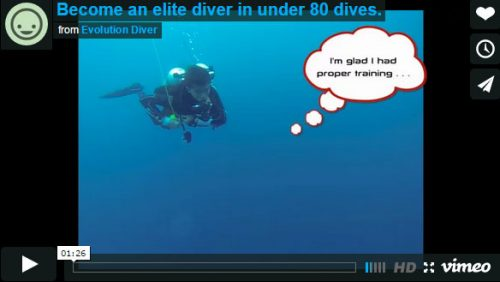 become an elite diver in under 80 dives