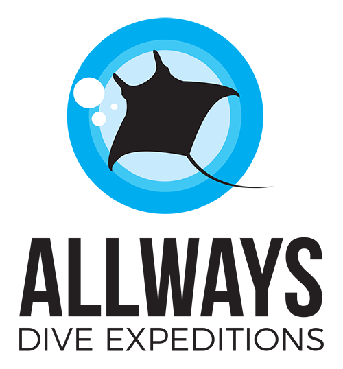 Scuba Diving Adventure Holidays and Dive Travels Australia
