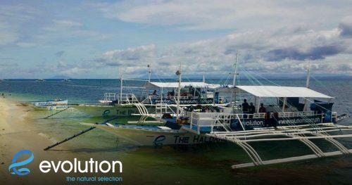 haldane and beagle dive boats evolution diving resort philippines