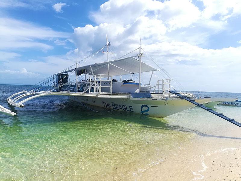 beagle dive boat evolution diving resort malapascua