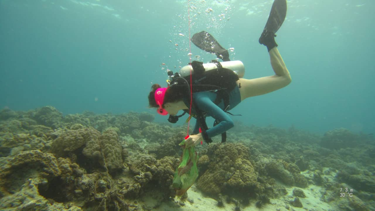 reef clean up dives malapascua