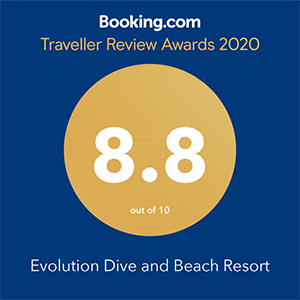 booking com traveller review award 2020